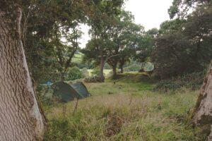 Bush Farm Campsite-16-min
