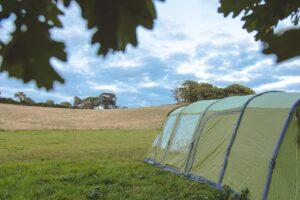 Bush Farm Campsite-38